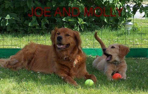 Joe and Molly